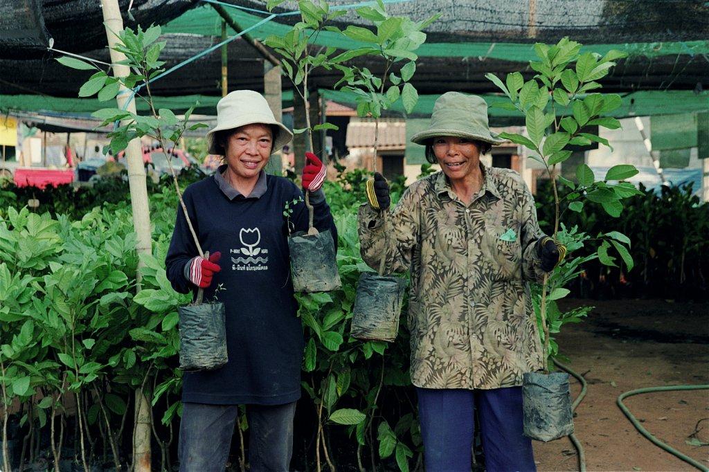 Plant-ladies-Thailand